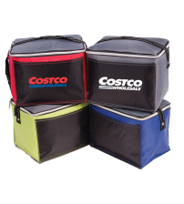 Artic 6-Pack Cooler